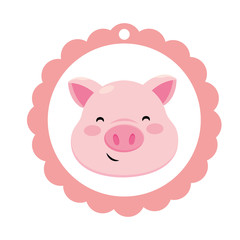 pig only face