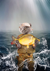 Fisher cat is holding a big fish. Concept illustration