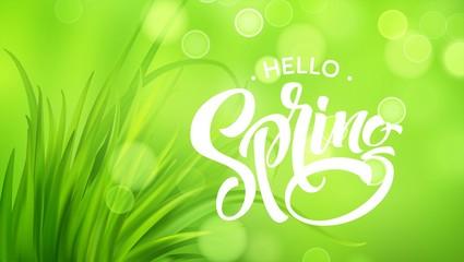 Frash Spring green grass background. Vector illustration