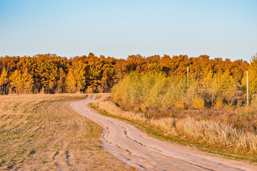 Autumn view of the road by the meadow at sunset time.