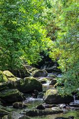 Torc Waterfall, Killarney National Park, Ireland
