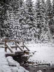 Verschneite Brücke im Harz