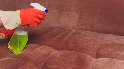 Beautiful young woman is smiling, using a brush and a spray while cleaning couch in the house.