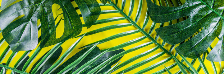 Tropical background. Palm and monstera leaves on yellow blue  background. Flatlay, top view, minimal layout, summer concept Wall mural