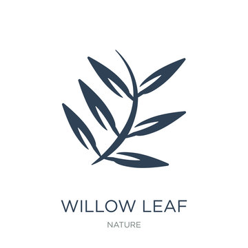 willow leaf icon vector on white background, willow leaf trendy