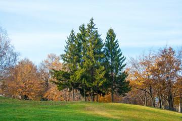 Beautiful autumn landscape in Kiev park. Ukraine.