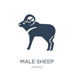 male sheep icon vector on white background, male sheep trendy fi