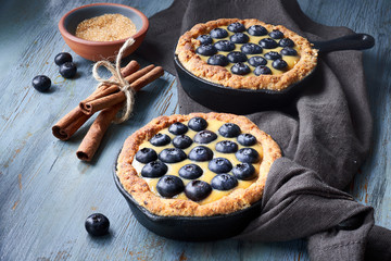 Delicious Blueberry tartlets with vanilla custard cream on light rustic background