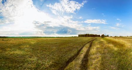 A Wide Landscape