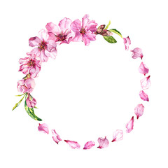 Pink cherry petals, sakura blossom, spring cherry flowers. Floral wreath. Watercolor round border