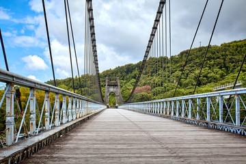 Sainte Rose / La Reunion: Railing of the magnificent and impressive old suspension bridge over the East River
