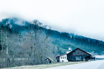 Wooden hut in the Black Forest with foggy firs in the background at a street