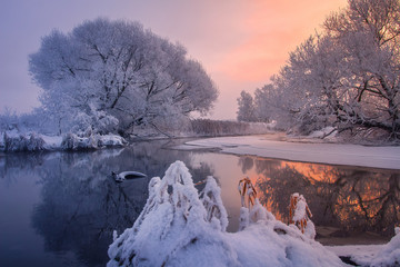 Garden Poster Scandinavia Morning winter landscape in sunlight