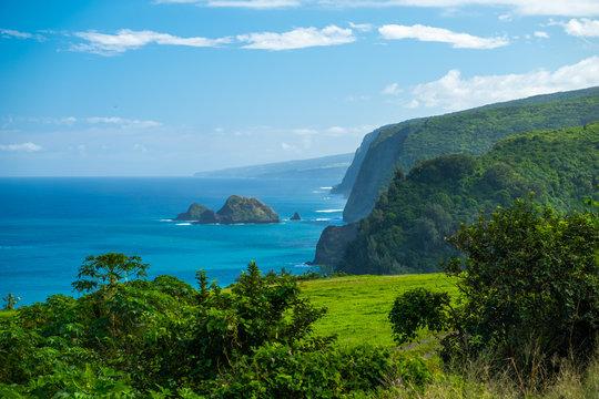 North Coast of the Big Island, area near the Pololu valley, Hawaii