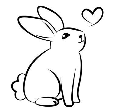 rabbit line sit