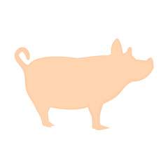 Magnificent pig pink design on a white background
