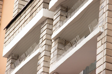 part of the facade of the building with plastic spikes against pigeons. the design does not allow birds to sit down and shit. Vertical plastic spikes in two rows keep the house from pigeon droppings.