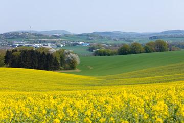 Frühlingserwachen im April, Deutschland