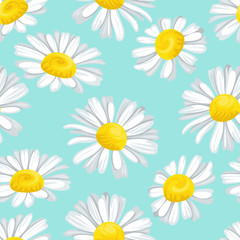 White daisies on blue background. Floral seamless pattern. Vector illustration of wildflowers in cartoon flat style.