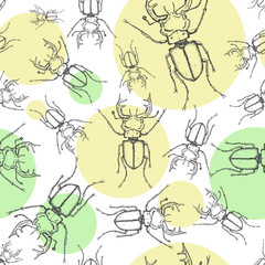 Sketch stag beetles seamless pattern with color circles. Hand drawn sketch in vintage engraving style. Insect vector illustration.