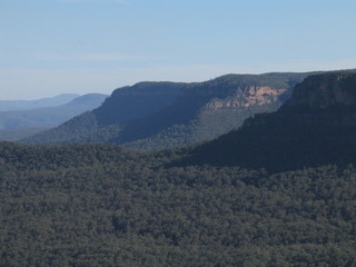 Nature in Australia. Blue Mountains Park
