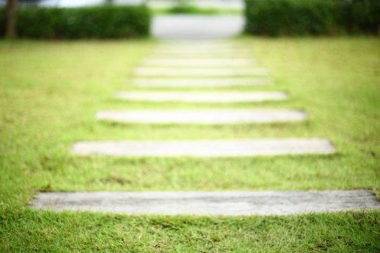 pathway pavement step on green grass front yard garden