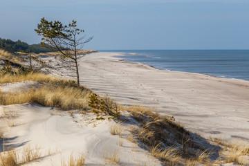 Plaża w Słowińskim Parku Narodowym.