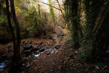 Hiking trail Millomeris waterfall Cyprus