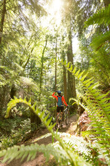 Rear view of female hiker with mountain bicycle walking in forest