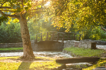Beautiful autumn park scenery. Yellow and green colors, pond and bridge in a park. Soft sun rays and soft fall tones. Topcider park, Belgrade, Serbia.