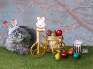 Easter still life with  a kitty in a bunny  image