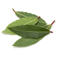 Canvas Prints Spices Aromatic bay leaves