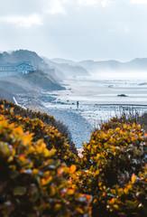 Man walking on the coast