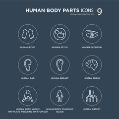 9 Human Foot, Fetus, body with x ray plate focusing on stomach, Brain, Breast, Eyebrow modern icons black background, vector illustration, eps10, trendy icon set.