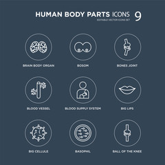 9 Brain body organ, Bosom, Big Cellule, Lips, Blood Supply System, Bones Joint, Vessel, Basophil modern icons on black background, vector illustration, eps10, trendy icon set.