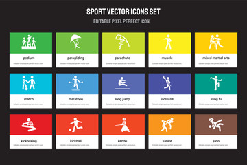 Set of 15 flat sport icons - Podium, paragliding, kendo, mixed martial arts, kickboxing, Lacrosse, kung fu, Karate. Vector illustration isolated on colorful background
