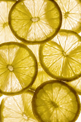 Light background with citrus fruit of lemon slices, background