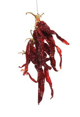 Spoed Foto op Canvas Kruiderij Dry spicy peppers hung by string, isolated on white background