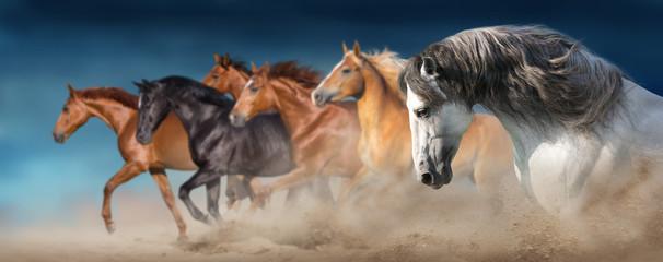Wall Mural - Horse herd run gallop in desert dust against dramatic sky