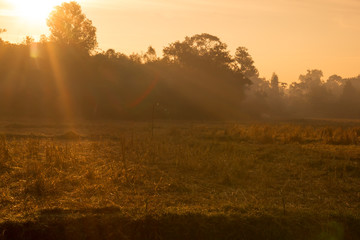 Landscape of sunrise in agriculture field.