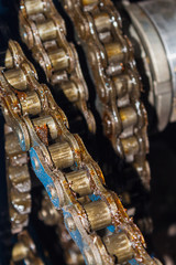 Grease roller chain