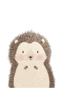 Cute image vector illustration of adorable hedgehog isolated on white background. Hand drawing hedgehog for greeting card, decor for nursery baby and kids room. Wallpaper, apparel, invitation, poster