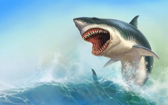 Great White Shark Body on beck