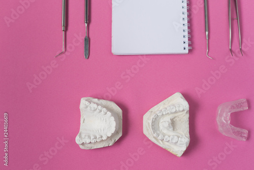 on the pink surface lie a plaster cast of teeth, a notebook