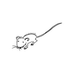 mouse vector doodle sketch isolated on white background