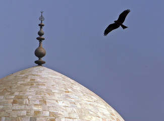 A bird flies over the dome of Humayun's Tomb in New Delhi.