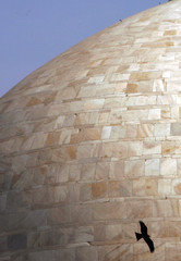 A bird flies in front of the marble dome of Humayun's Tomb in New Delhi.
