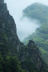 Fog mountains