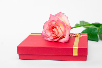 Red box and pink rose on a white background, a gift for the beloved. Your gifts