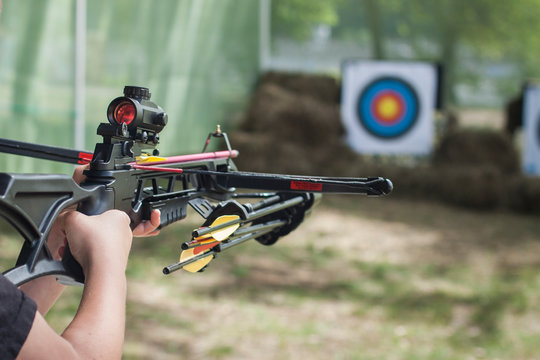 The shooter directed the crossbow towards the colored target. Hit the target. Shooting range